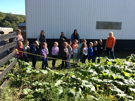 1st Graders  visit Dollinger Family Farm