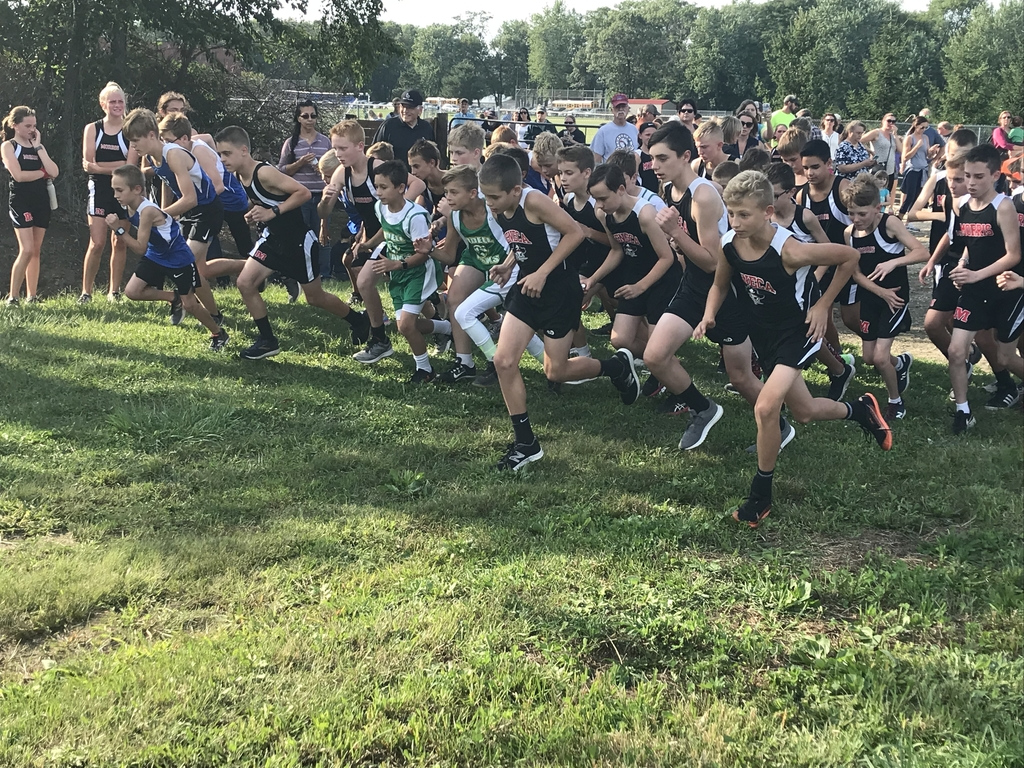 This is an image of boys cross country runners.